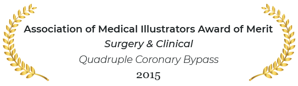 Association of medical illustrators award of merit in surgery and clinical